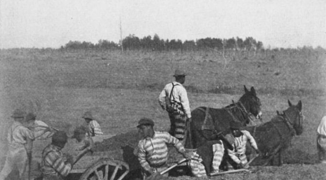 Что ждало освобожденных чернокожих рабов в Америке
