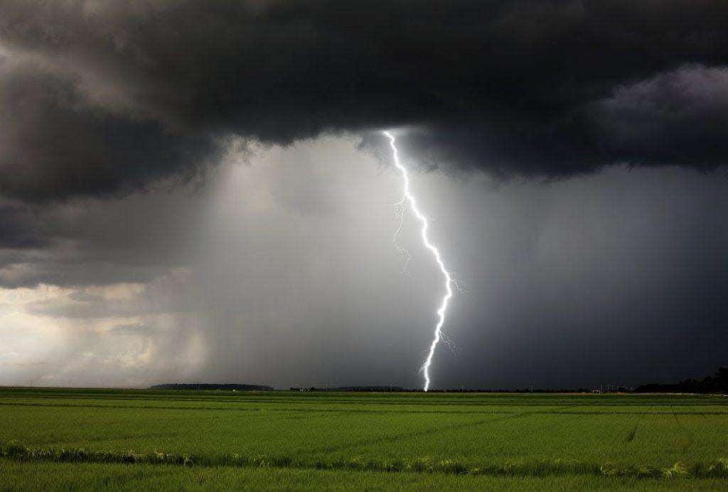 молния в поле