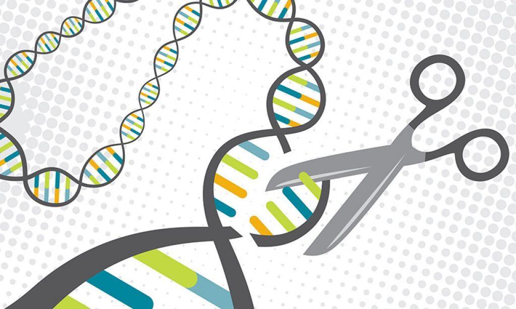 Смысл терапии состоит в замещении повреждённых генов в печени мужчины здоровыми при помощи так называемых «молекулярных ножниц», которые вводят в организм внутривенно.