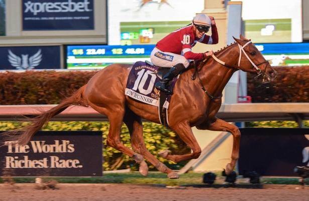 Победитель 2018 года - верховая лошадь Gun Runner