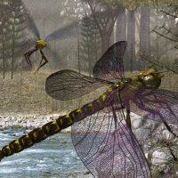 Самые большие насекомые в мире