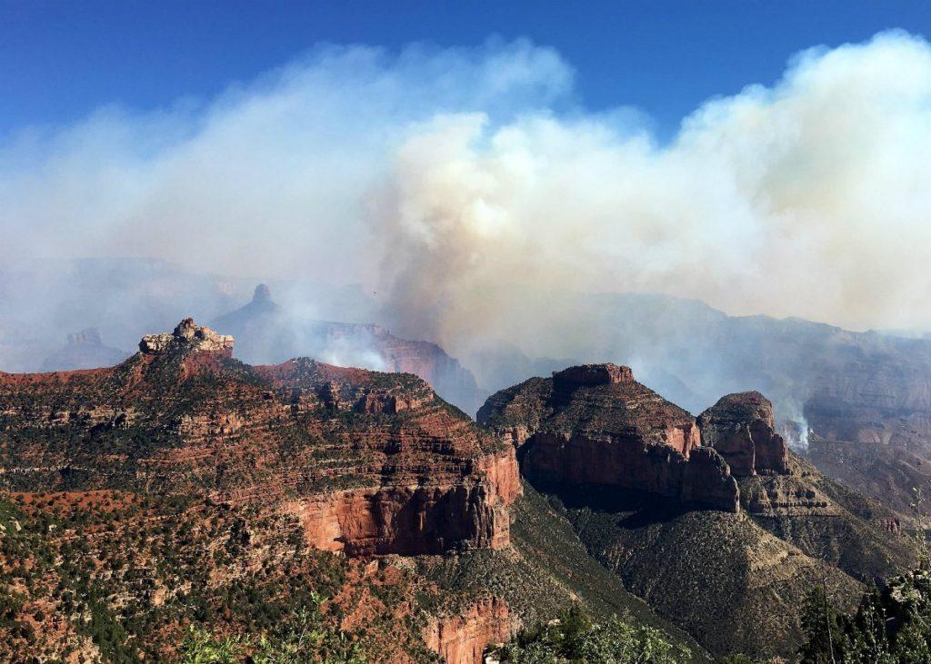 Контролируемый пожар на территории каньона