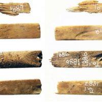Учёные определили возраст древнейшего набора для нанесения татуировок