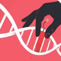 Учёные призывают ввести мораторий на применение технологии CRISPR/Cas