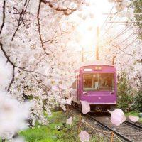 Железнодорожная система Японии: интересные правила и особенности