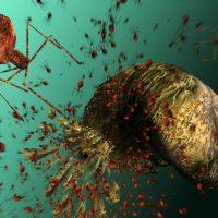 Опасные микроорганизмы и патогены, используемые для лечения других заболеваний