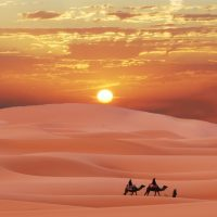 Тайны великой пустыни Сахара ?️