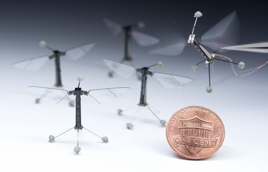 RoboBee: самый маленький летающий робот