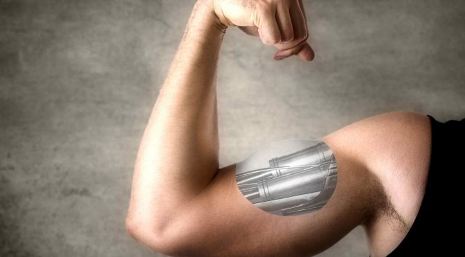 Искусственные мышцы, которым позавидовал бы сам Терминатор