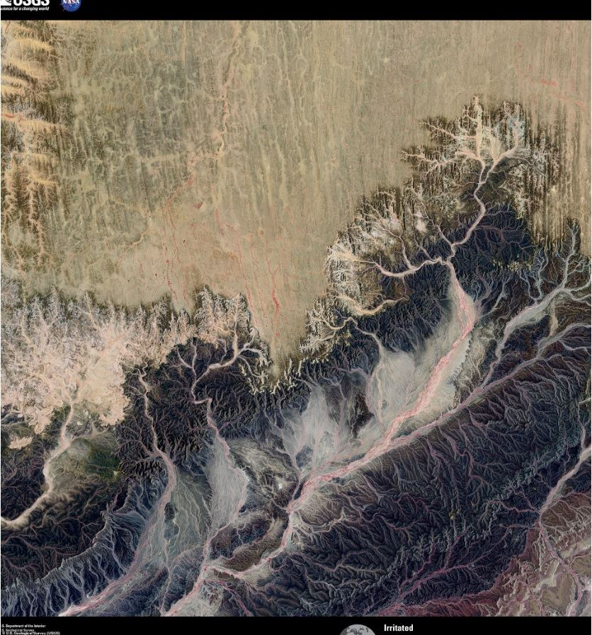 Проект «The Earth as ART»: гармония науки и искусства