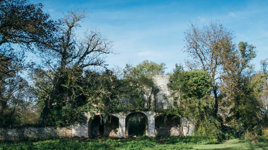 Компания Dartagnans предлагает замок во Франции за €50