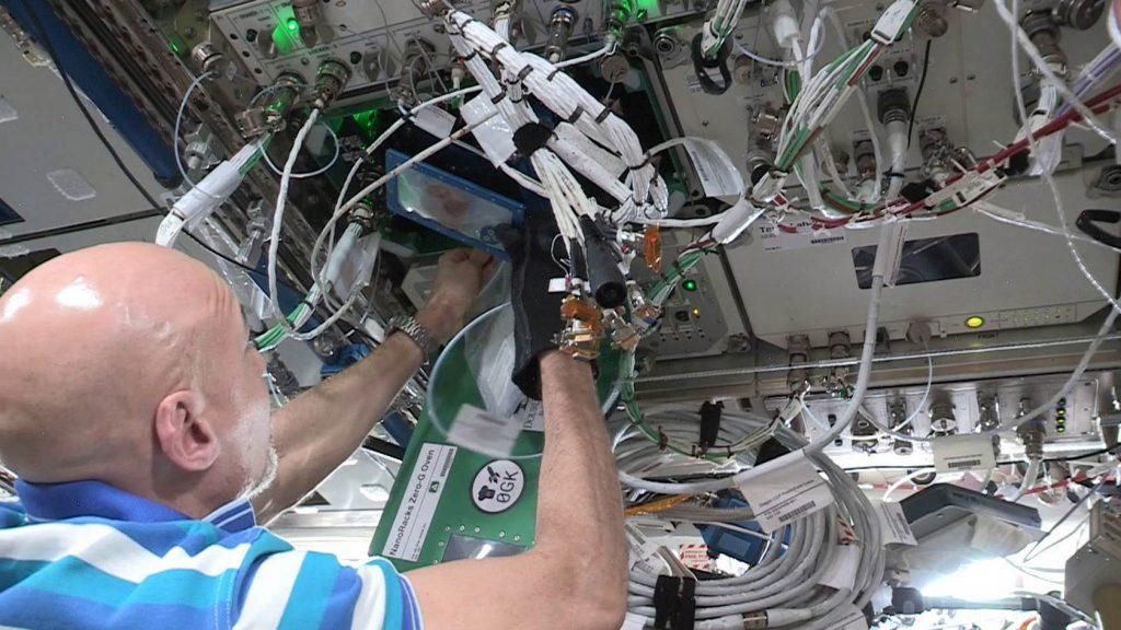 Первое печенье, приготовленное на борту МКС