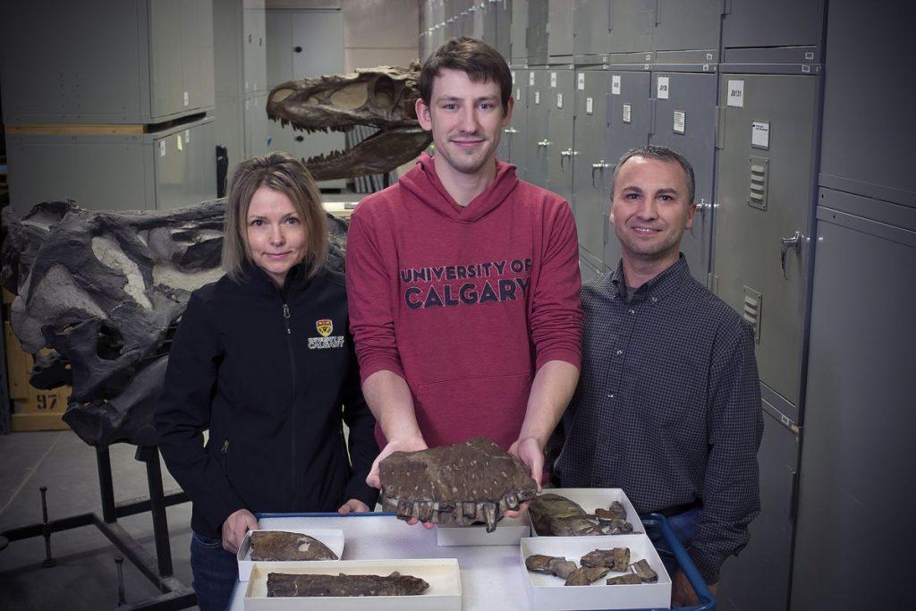 Thanatotheristes degrootorum: новый вид Тираннозавров