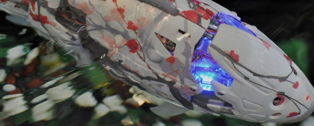 MIRO: удивительные корейские рыбы-роботы