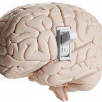 Учёные обнаружили «тумблер» сознания в глубине мозга