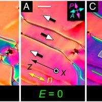 Учёные обнаружили сегнетоэлектрическую нематическую фазу жидких кристаллов