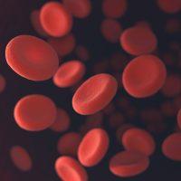 Синтетические эритроциты превзошли возможности настоящих