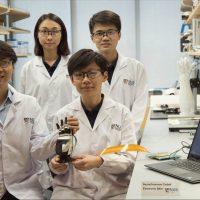 Искусственная электронная кожа ACES для протезов и роботов