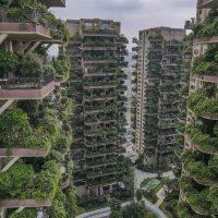 Qiyi City Forest Garden: как перспективный проект превратился в эко-ад