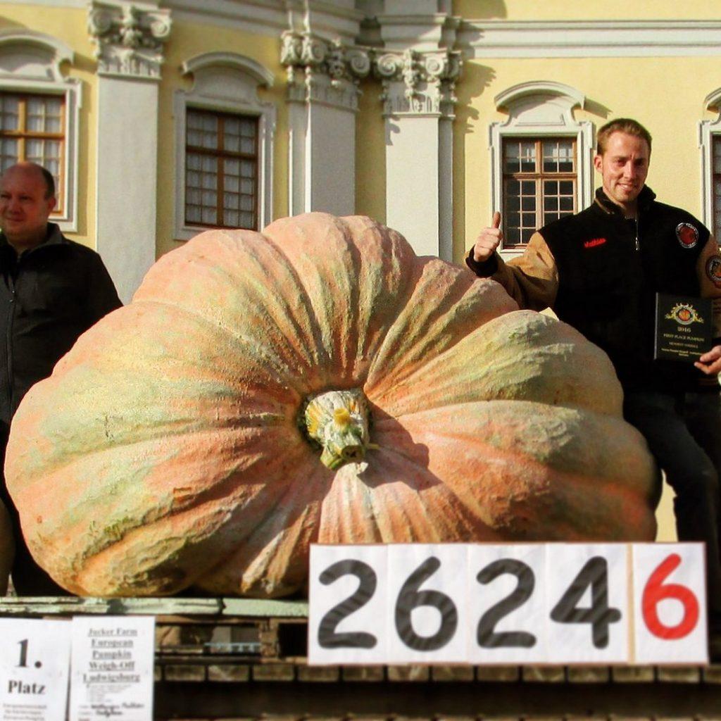 Хэллоуин и тыква: самые необычные тыквенные рекорды