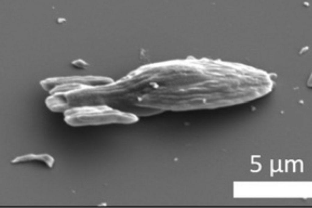 Микроскопический USS Voyager может передвигаться самостоятельно