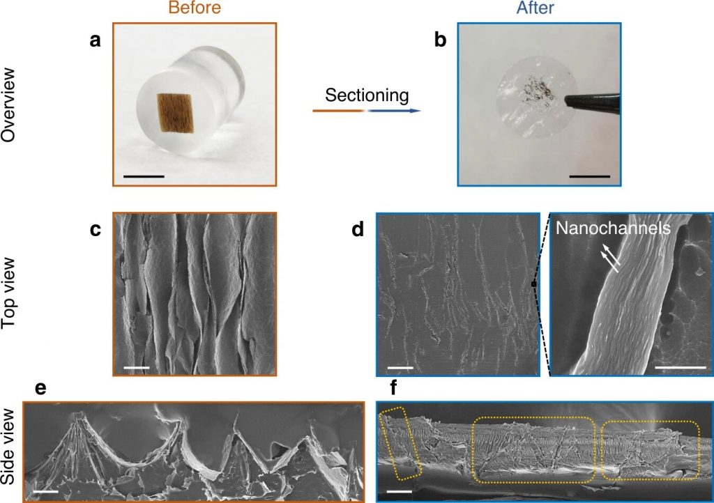 Инновационный графеновый фильтр для воды