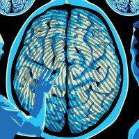 Полиция Дубая раскрыла дело при помощи технологии «отпечаток мозга»