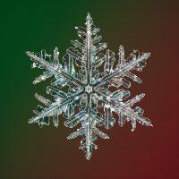 Фотографии снежинок в рекордно высоком разрешении