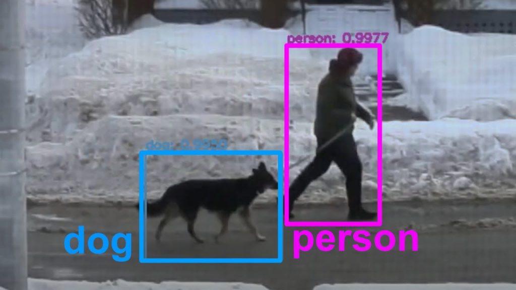 Хороший мальчик! Блогер научил ИИ распознавать собак и одаривать их комплиментами