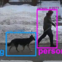 Блогер научил ИИ распознавать собак и одаривать их комплиментами