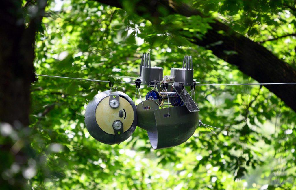 SlothBot: робот-ленивец завоёвывает джунгли