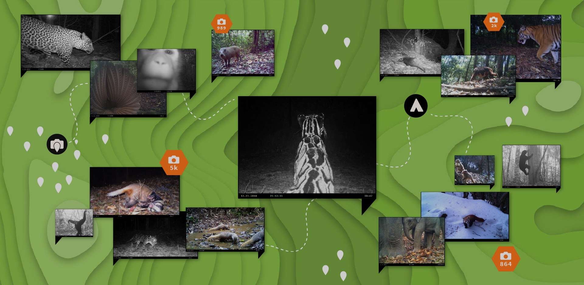 Unseen Empire: исследуйте джунгли Азии в мобильной игре