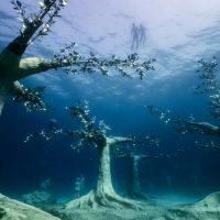 Musan: музей подводной скульптуры Айя-Напы