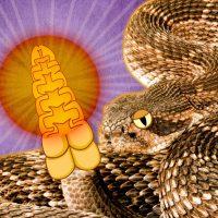 Гремучие змеи используют слуховые иллюзии для обмана потенциальных врагов