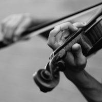 Учёные раскрыли секрет кремонских скрипок